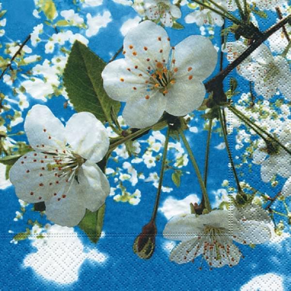 Servietten 33x33 Blossoms-in-the-Sky 20 Stück