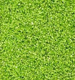Partytischdecke.de | Perlkies apfelgrün 1,2-1,8 mm 1 kg Beutel