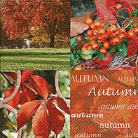 Partytischdecke.de   Servietten 25x25 Autumn nature 20 Stück