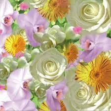 Partytischdecke.de | Serviette 33x33 | Springflowers | 20 Stück