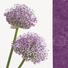 Partytischdecke.de | Servietten 33x33 Allium 20 Stück